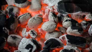carbon vegetal para asar carne